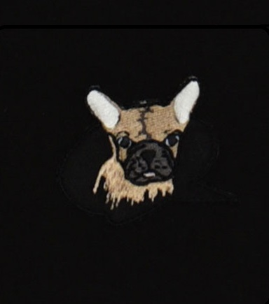 Hebe - sweater - hond - zwart - Eileen4Kids